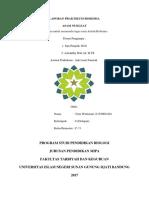 laporan praktikum asam nuklear