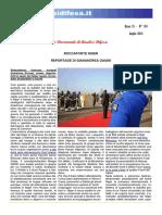 Niger - Analisi Difesa