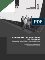 01. La Extinción Del Contrato [2010].pdf