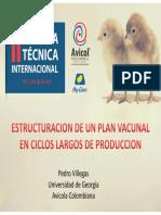 18Vacunacion_Ponedoras