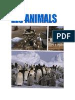 T2. Els Animals