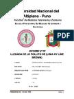 Informe 02 Llegada de Los Pollitos