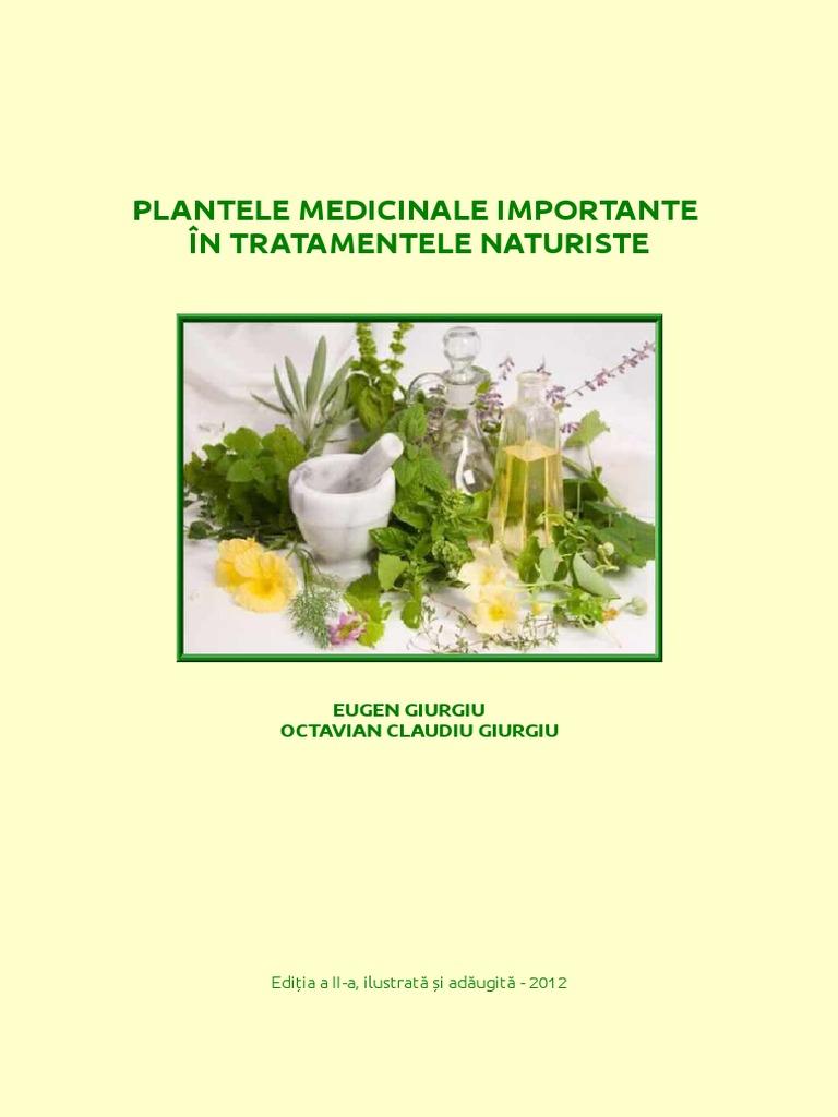 Plante pentru a crește potența - cele mai eficiente 10