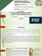 Expo Bioquimica Nutricion 2016