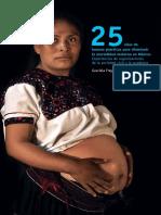 Mortalidad Materna (Experiencia de Organizaciones de La Sociedad Civil)