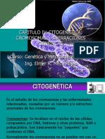 Capitulo v. Citogenetica y Cromosomas
