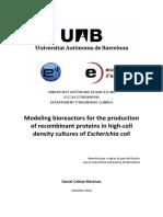 Bioreactor Modelling