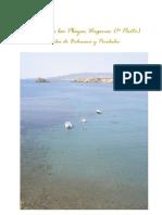 Playas vírgenes 1