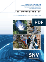 SNV INFORME FINAL PERFILES APROLAB.pdf