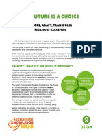 338686496-Absorb-Adapt-Transform-Resilience-capacities.pdf