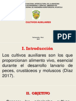Cultivo AUAXILIARES ppt.pptx