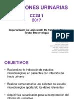 Clase 4 Infecciones Urinariass