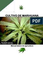 manualbsicodelcultivodemarihuana-140811003509-phpapp02