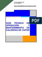 Manual para Calderas de Vapor.docx