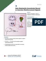 A Central Amygdala-Substantia Innominata Neural Circuitry Encodes Aversive Reinforcement Signals