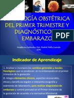 Diagnostico de Embarazo Final 2016 obstetricia uchile