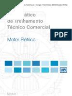 WEG Guia Pratico de Treinamento Tecnico Comercial 50009256 Catalogo Portugues Br