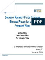 Yadala, Soumya - Design of Raceway Ponds for Biomass Production