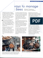 239274588-Stingless-Bees.pdf