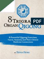 8 Trigram Qigong PDF