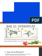 BAB 10 Herbarium by Na2CL 2