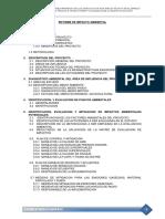 ESTUDIO DE IMPACTO AMBIENTAL-CARHUANILLA