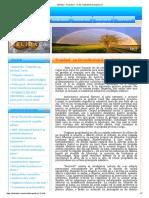 Melidava - Propolisul - Un Dar Multivalent Al Stupului (11)