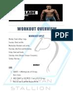 Workout Plan the Blade 12 Weeks