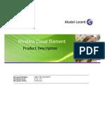 WCE_Product_Description.pdf