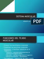 06) Sistema Muscular