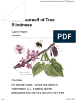 Cure Yourself of Tree Blindness