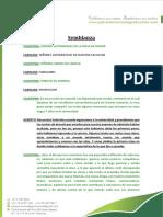 04-SEMBLANZA-Ejem-PB (4) (1)