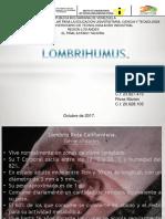 Lombrihumus Exp