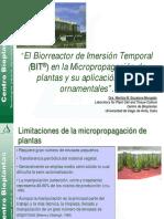 12_El_Biorreactor_de_Inmersion_Temporal_en_la_Micropropagacion_ornamentales_Dra.Maritza_M.Escalona_Morgado.pdf