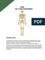 sistema oseo (1).docx