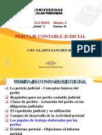 Peritaje Contable Judicial - Semana 06[2] (1)