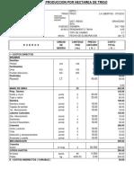 Modelo de Costos de Produccion Por Hectarea de Trigo