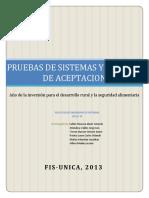 pruebasdesistemasyaceptacion-130629115038-phpapp01