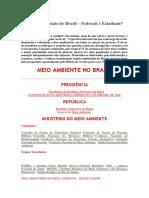 Órgãos ambientais do Brasil.docx