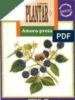 Coleção Plantar Amora-preta