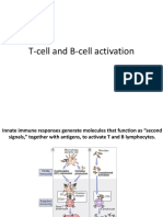 C-12-Tcell and Bcell Activation
