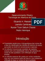 Desenvolvimento Mineiro - Seminário Nurian