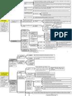 Esquema de Derecho Sucedorio II. Osvaldo Parada.pdf