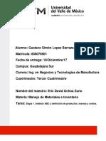 Actividad 3 Proyecto Integrador Etapa 1_GSLB.docx