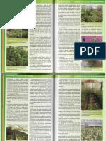 Jorge Cervantes La biblia del cultivador 2.pdf
