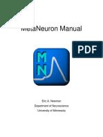 Metaneuron Manual