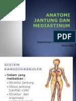 Anatomi Jantung Dan Mediastinum