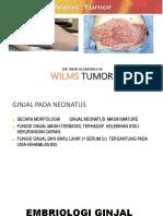 Wilm Tumor Alam