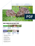 Rabbit Farming Info and Project Guide _ Agri Farming