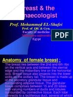 Breast The Gynaecologist Prof Mohammed El Shafei Breast